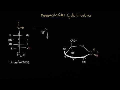 Monosaccharide Transporters In Plants: Structure, Function And Physiology - Sciencedirect