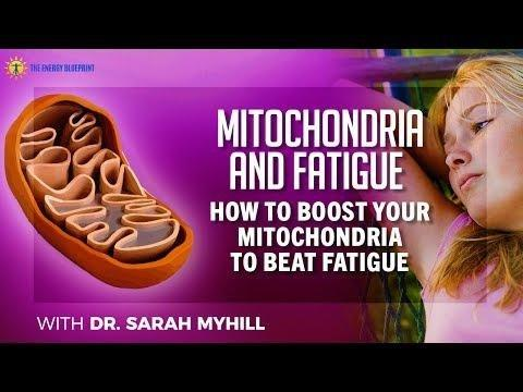 Mitochondria: The Ketogenic Diet—a Metabolism-based Therapy