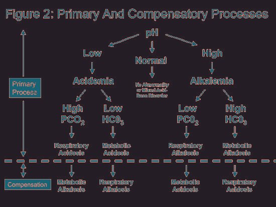 Partially Compensated Respiratory Acidosis
