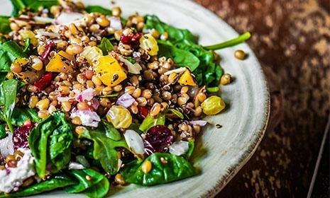 Vegan Recipes Type 1 Diabetes
