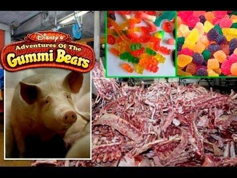 Sugarless Gummy Bears Are Not Safe For Humans