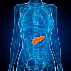 What Stimulates The Pancreas To Secrete Insulin?