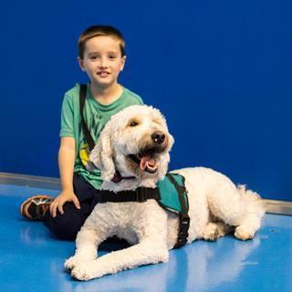 Diabetes Alert Dog Training