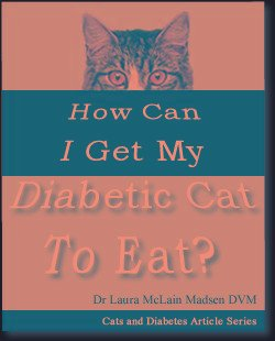 How Can I Get My Diabetic Cat To Eat?