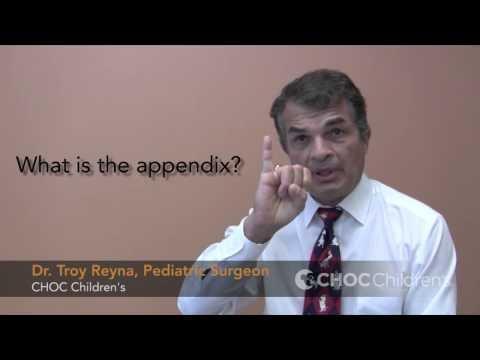 Does A Keto Diet Cause Appendicitis