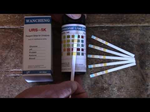 What Are Diabetes Test Strips Used For