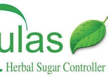 Insulin Plant Leaf Powder
