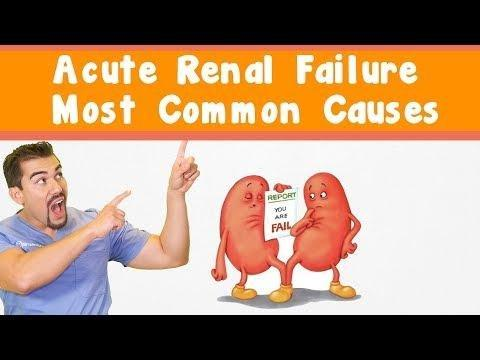 Insulin And Renal Failure