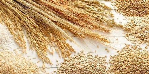 Los Mejores Cereales Para Tu Diabetes