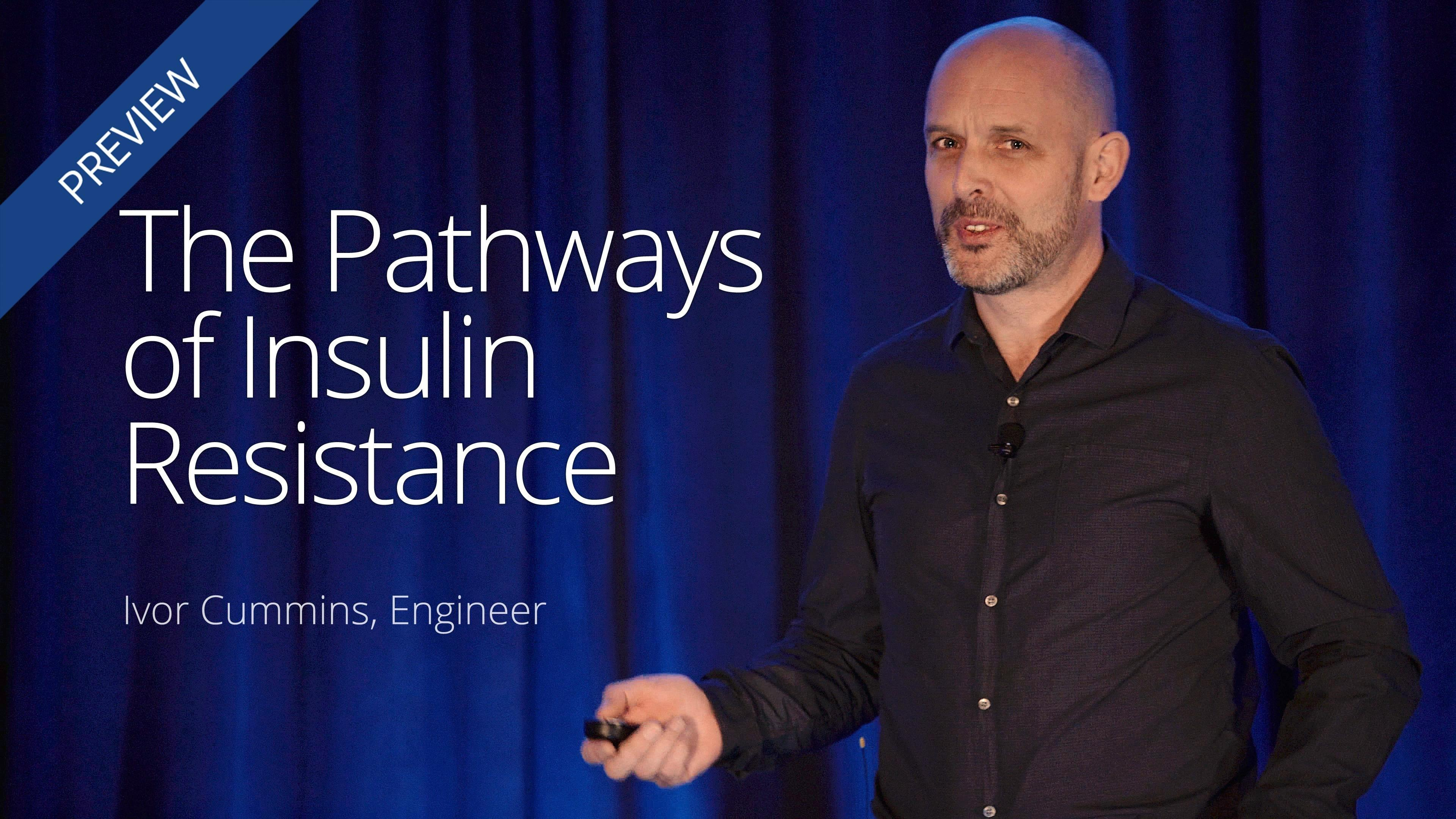 The Pathways Of Insulin Resistance