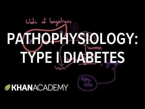 What Is The Pathology Of Diabetes?