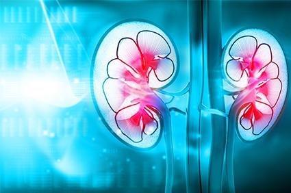 Tips On Reversing Diabetic Kidney Disease With Diet