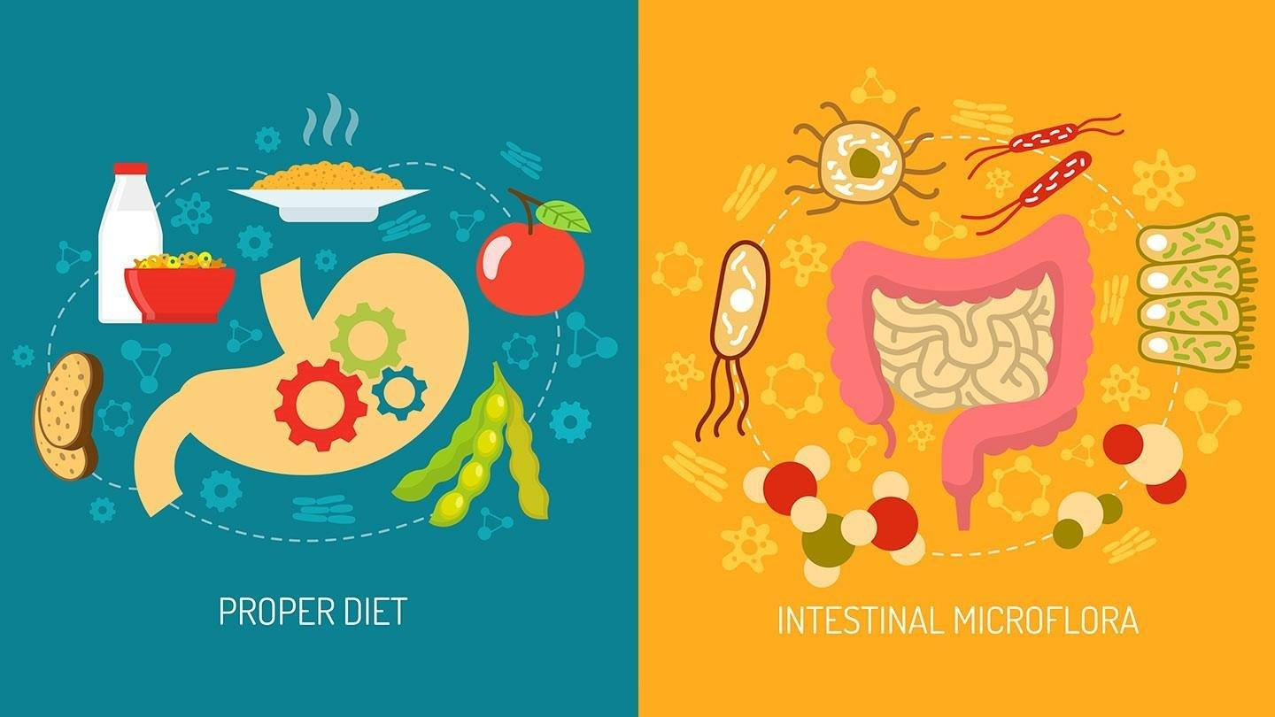 How Your Gut Microbiome May Affect Diabetes
