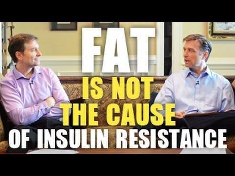 What Can Cause Hyperinsulinemia?