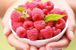 Where To Buy Raspberry Ketone In Canada