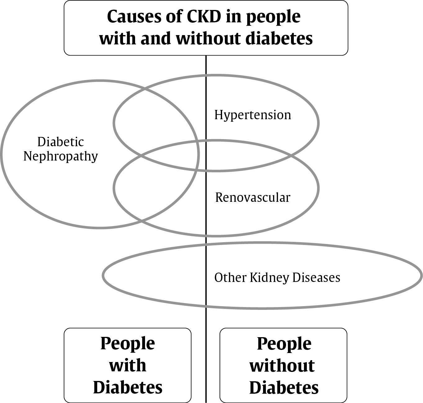 Mogensen Classification Diabetic Nephropathy