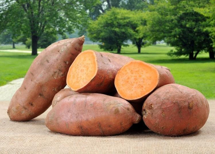 8 Wonderful Health Benefits Of Sweet Potatoes For Diabetics