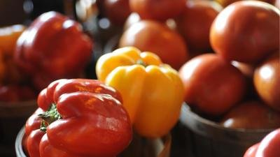 Breaking Down The Ketogenic Diet