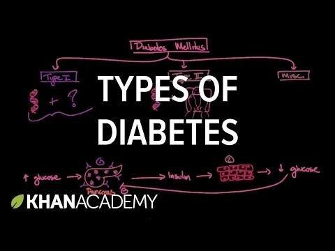 4 Types Of Diabetes