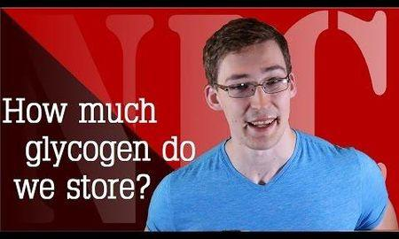Where Is Excess Glucose Stored As Glycogen?