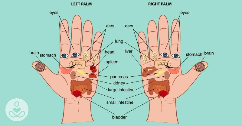 According To Reflexology, You Can Press These Points On Your Palm To Relieve Any Type Of Pain | The Hearty Soul