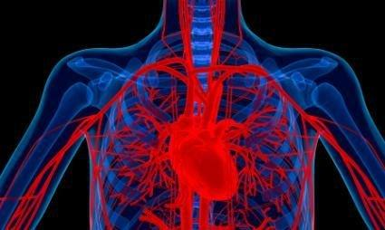1: Kidney Stones, Gout, & Heart Palpitations On Keto
