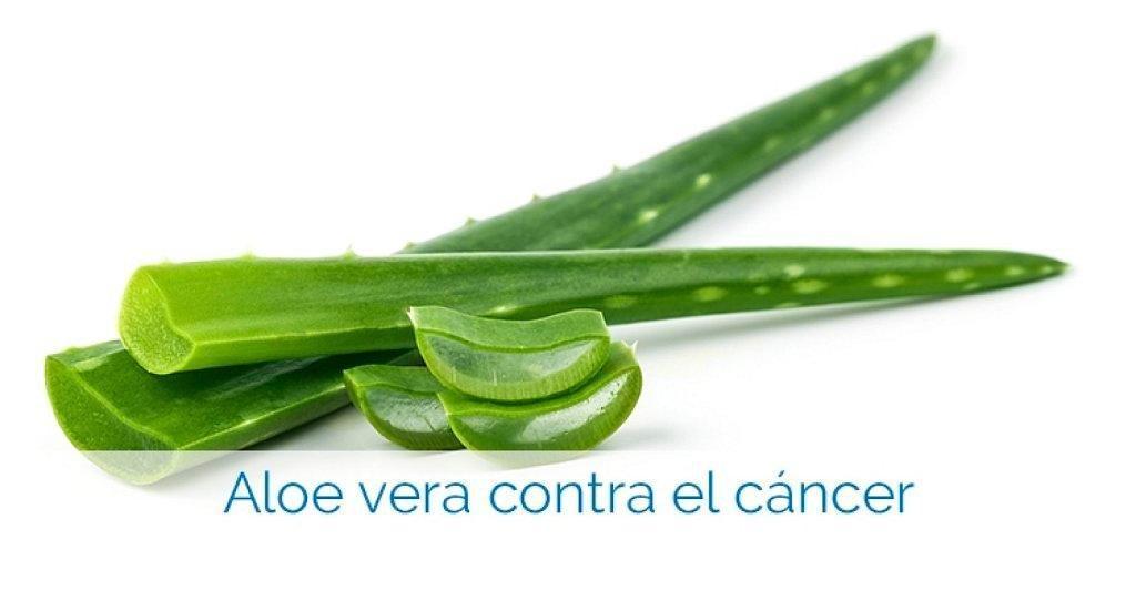 Remedio De Aloe Vera Para Prevenir Y Combatir El Cncer