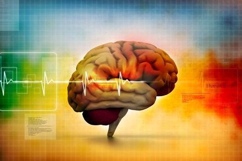 Ketosis Supports Good Brain Function