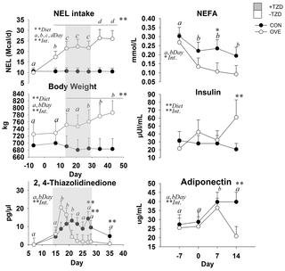 Insulin Effects In Muscle And Adipose Tissue