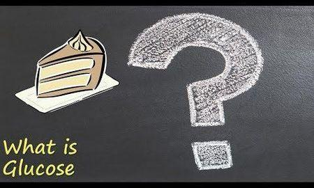 Where is glucose found in the body?