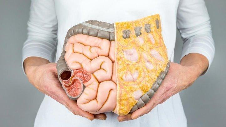 How Does Diabetes Affect the Digestive System?