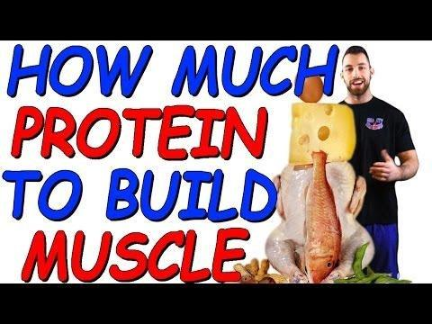How Much Protein Should A Diabetic Eat To Lose Weight