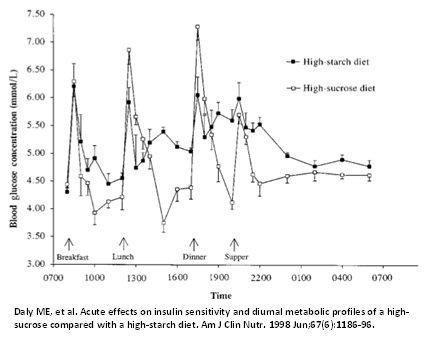 Ketogenic Diet Diabetes Type 2