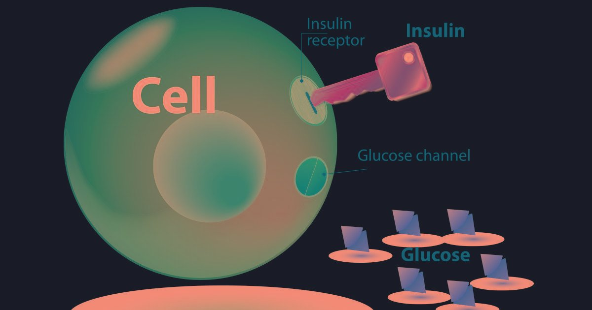 Can Insulin Resistance Kill You?