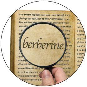 Berberine Vs Metformin 2016