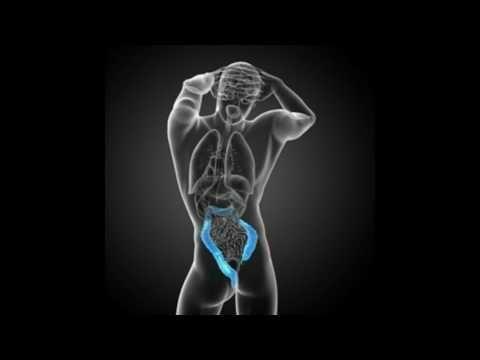Pancreatic Diabetes Symptoms