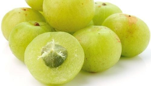 Benefits of Indian Gooseberry in Controlling Diabetes