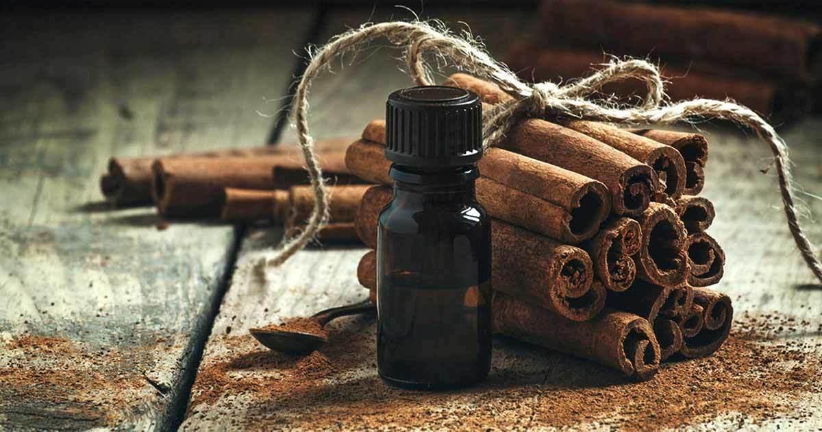 Cinnamon Prevents Diabetes