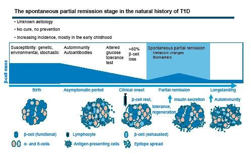 Remission Phase In Paediatric Type 1 Diabetes: New Understanding And Emerging Biomarkers