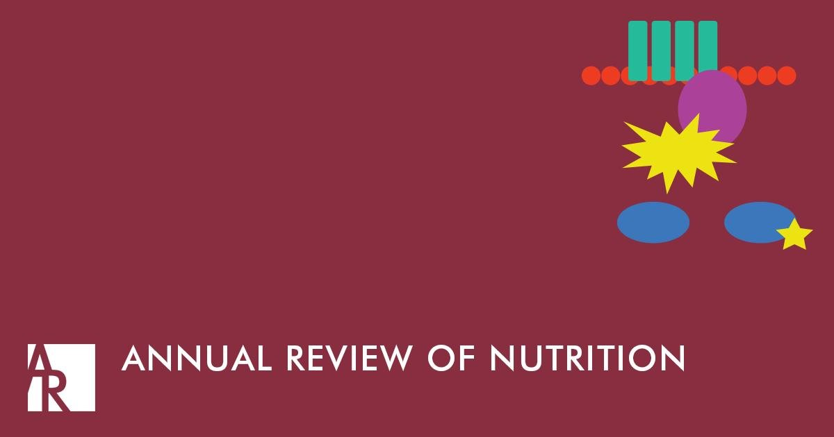 The Ketogenic Diet And Brain Metabolism Of Amino Acids: Relationship To The Anticonvulsant Effect
