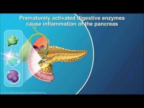 Hyperinsulinemic Hypoglycemia