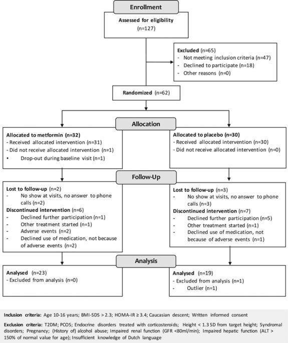 Long-term Treatment With Metformin In Obese, Insulin-resistant Adolescents: Results Of A Randomized Double-blinded Placebo-controlled Trial