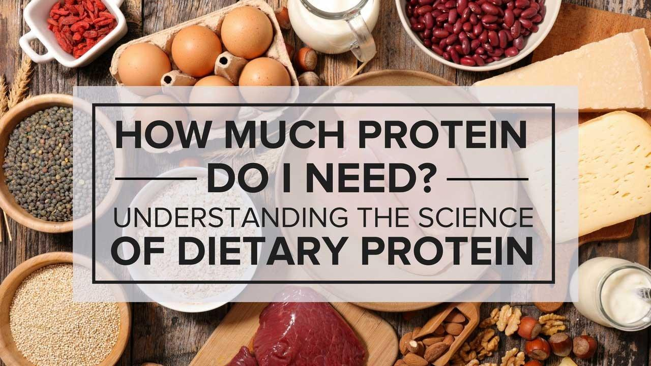 How Much Protein Should A Diabetic Have In A Day?