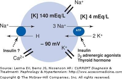 Chapter 4. Disorders Of Potassium Balance: Hypokalemia & Hyperkalemia