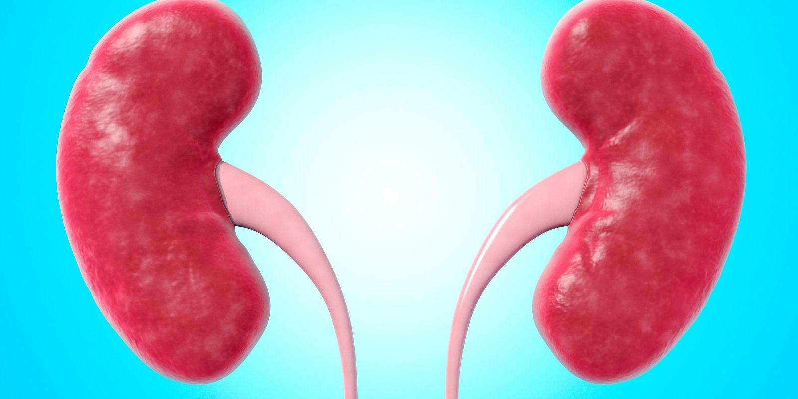 What Do Low Creatinine Levels Mean?