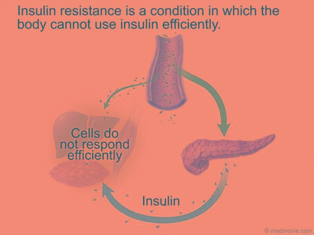 How Insulin Signals A Cell To Take In Glucose From The Blood Animation