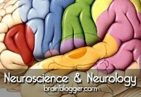 Blood Glucose And The Brain: Sugar And Short-term Memory