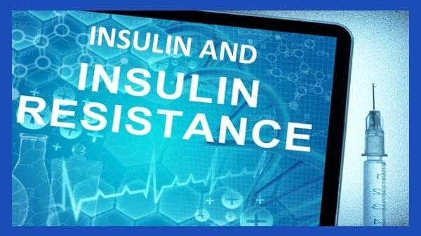 What Happens When There Is Too Much Insulin In The Body?