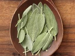 Sage: Health Benefits, Facts, And Research