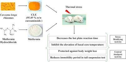 Effects Of Turmeric Curcuminoids And Metformin Against Central Sensitivity To Pain In Mice - Sciencedirect